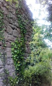 Abbey wall 2
